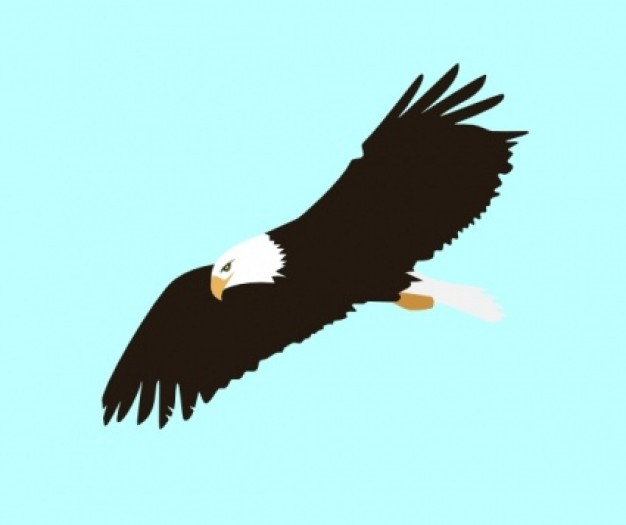 Soaring Eagle Clipart Black And White Clipart Panda Free Clipart