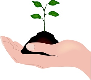 Soil Clipart Hand Holding A Seedling And Soil 0515 1003 2901 5345 Smu