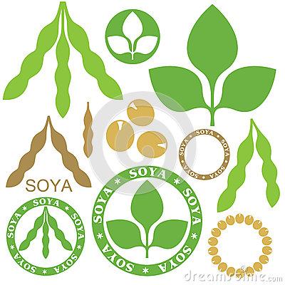 Soybean Stock Illustrations u2013 432 Soybean Stock Illustrations, Vectors u0026  Clipart - Dreamstime