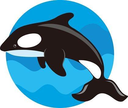 Sperm whale clip art vector sperm whale graphics clipart me