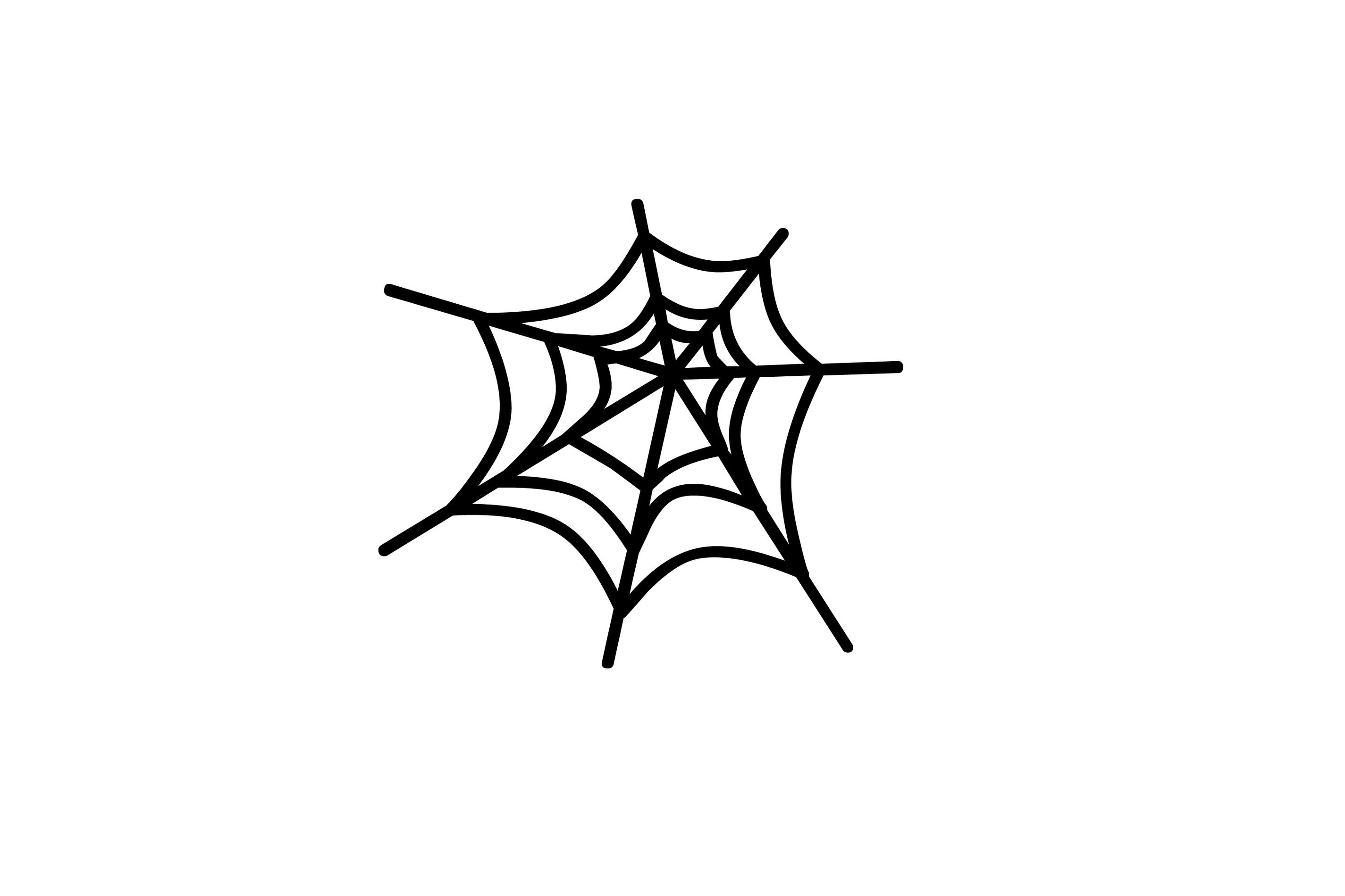 Spider Web Clipart Free To Use Clip Art -Spider web clipart free to use clip art resource 2-15