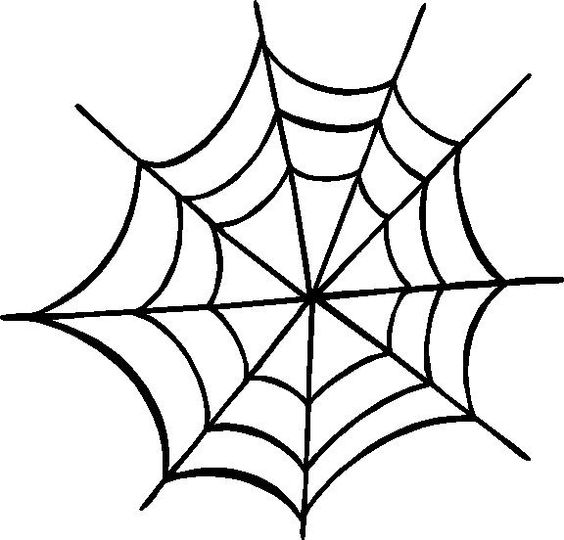 Spider web the world clipart