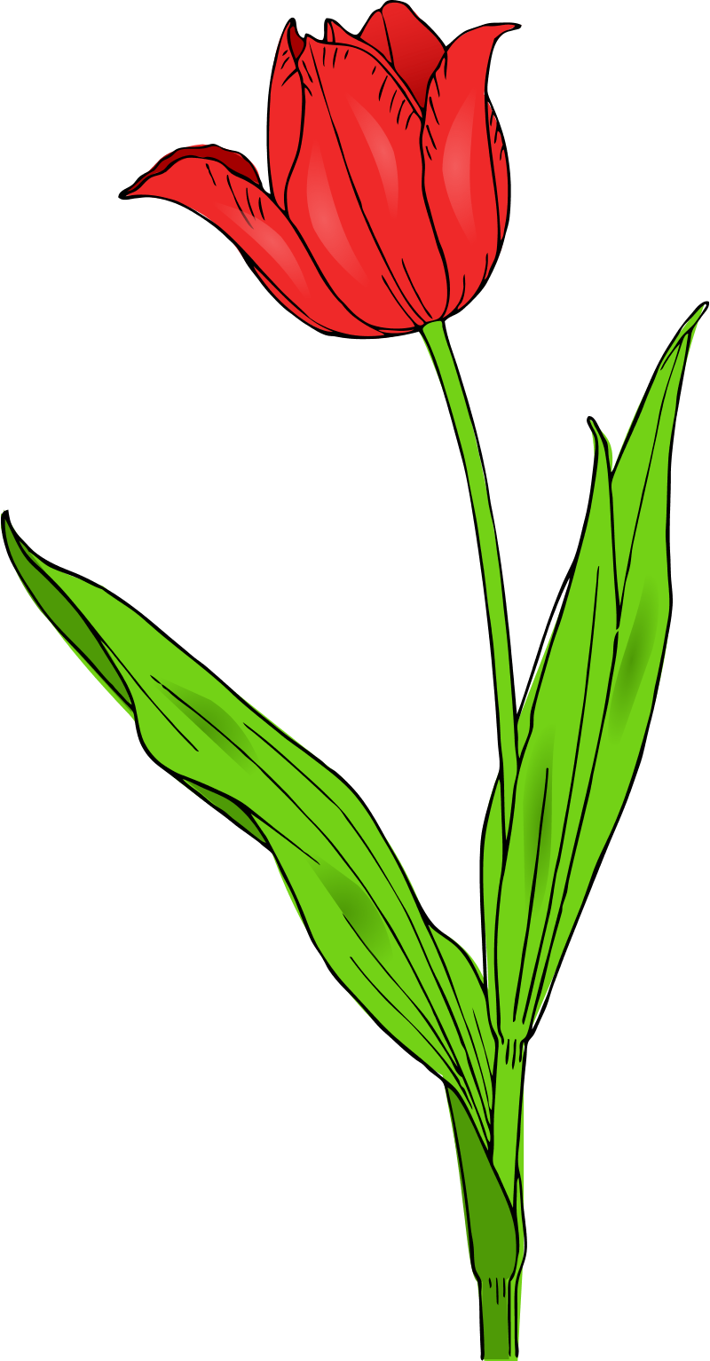Spring Flowers Clip Art-Spring Flowers Clip Art-18