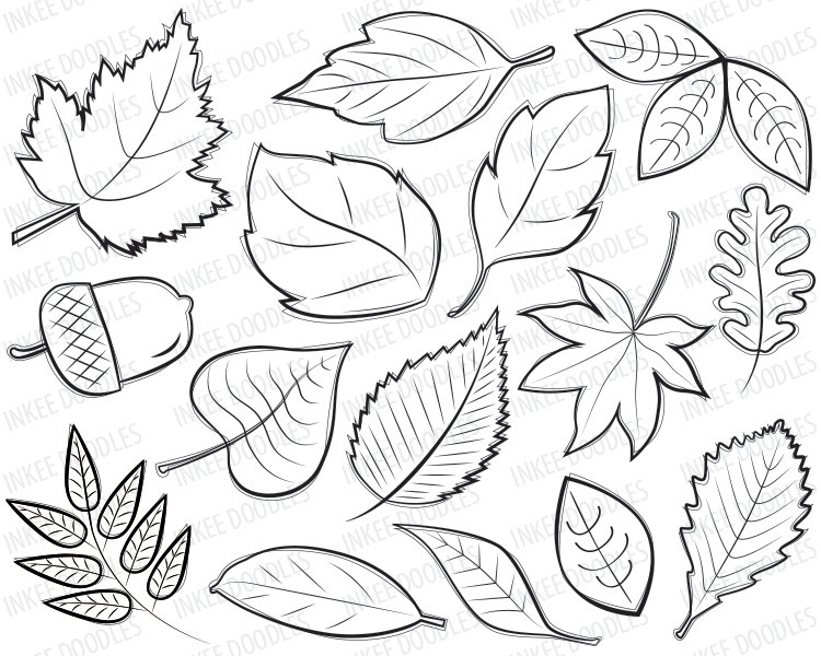 Spring Flowers Floral Clipart Cute Doodl-Spring Flowers Floral Clipart Cute Doodles Mothersinkeedoodles. Fall Black  Clipart Free Clip Art Images. Black And White Autumn Leaves Nature Clipart.  «-17