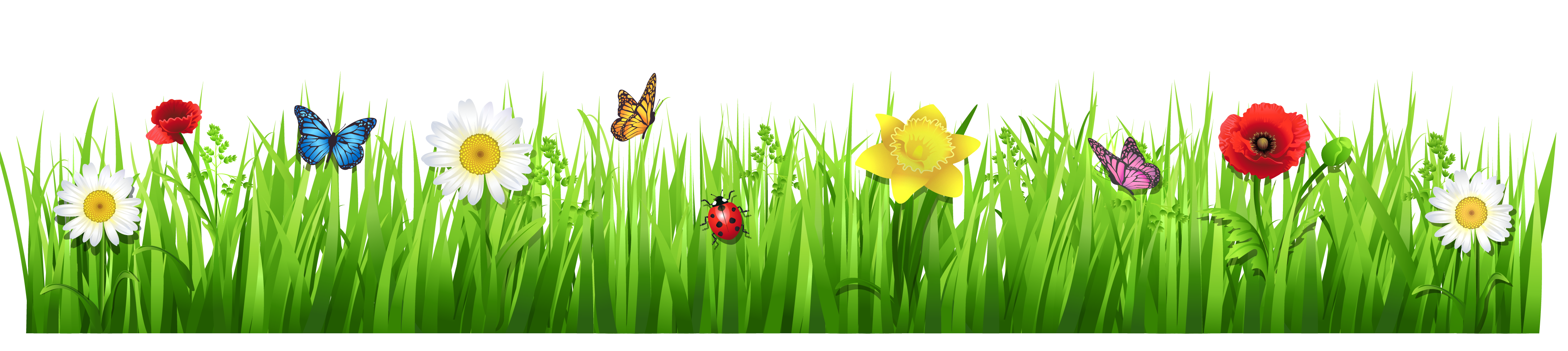 Spring grass with flowers . - Spring Flowers Clip Art Free