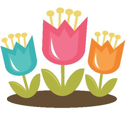 Spring Tulip Pictures