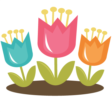 Spring Tulip Pictures-Spring Tulip Pictures-4