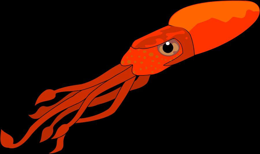 Squid Clip Art-Squid Clip Art-1
