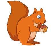 squirrel with two large teeth. Size: 59 Kb