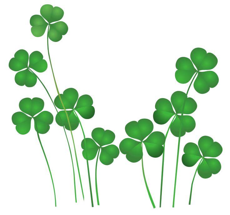 St Patricks Day Shamrocks Decor PNG Clip-St Patricks Day Shamrocks Decor PNG Clipart-9