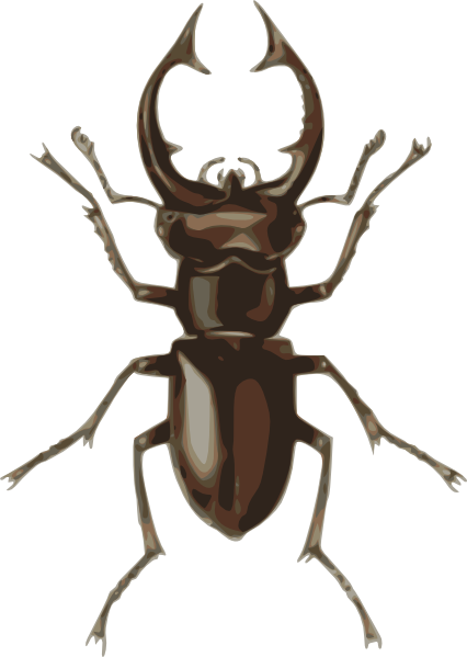 Stag Beetle Clip Art At Clker - Beetle Clipart