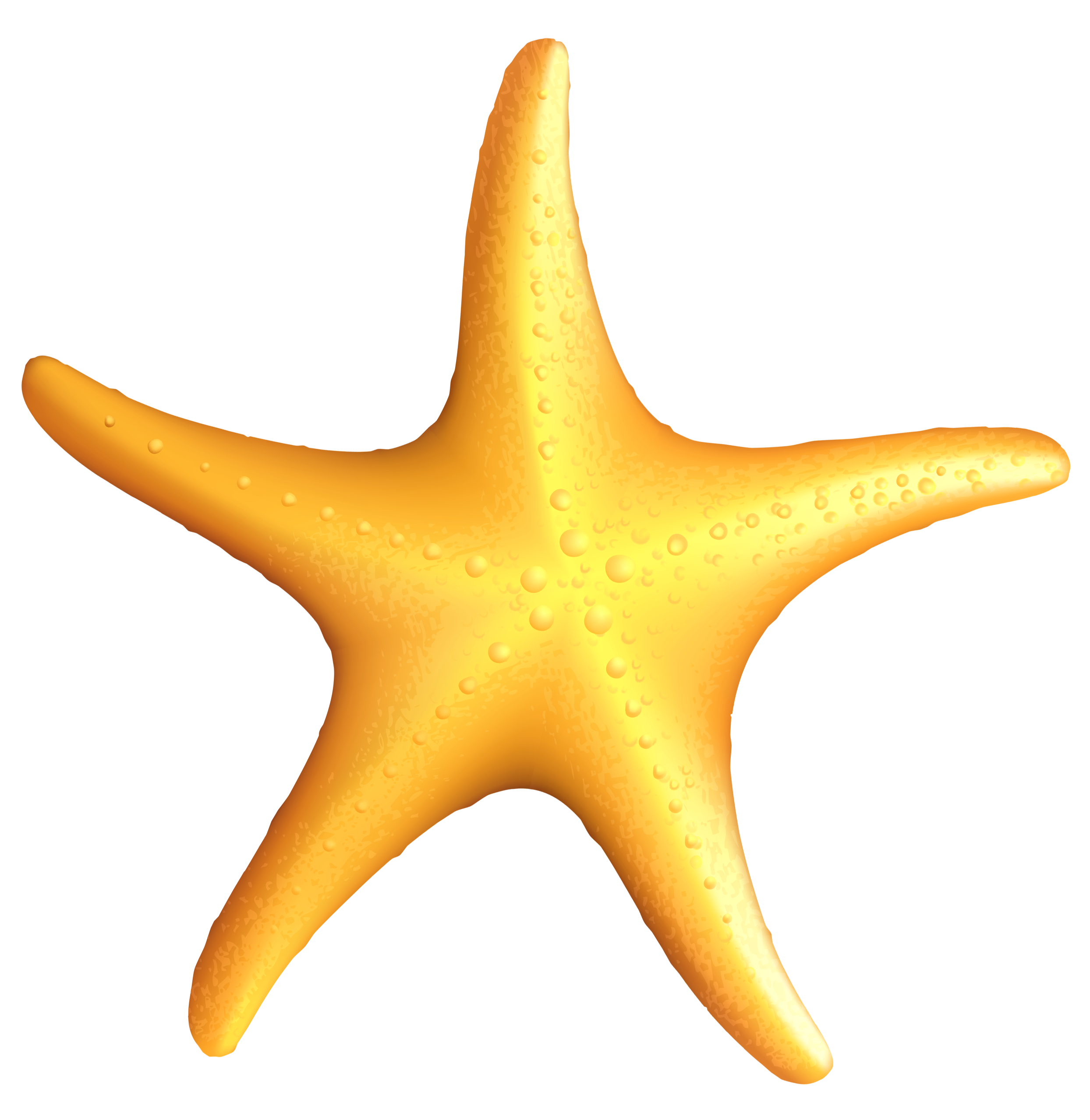 Starfish Clip Art - clipartall .