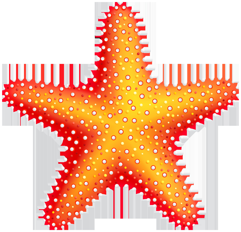 Starfish clip art web clipart