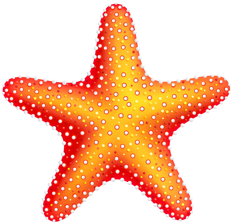 Starfish Clip Art Web Clipart-Starfish clip art web clipart-12