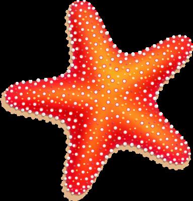 Starfish Clipart Best-Starfish Clipart Best-15