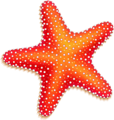 Starfish Clipart Best
