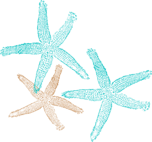Starfish Prints Clip Art