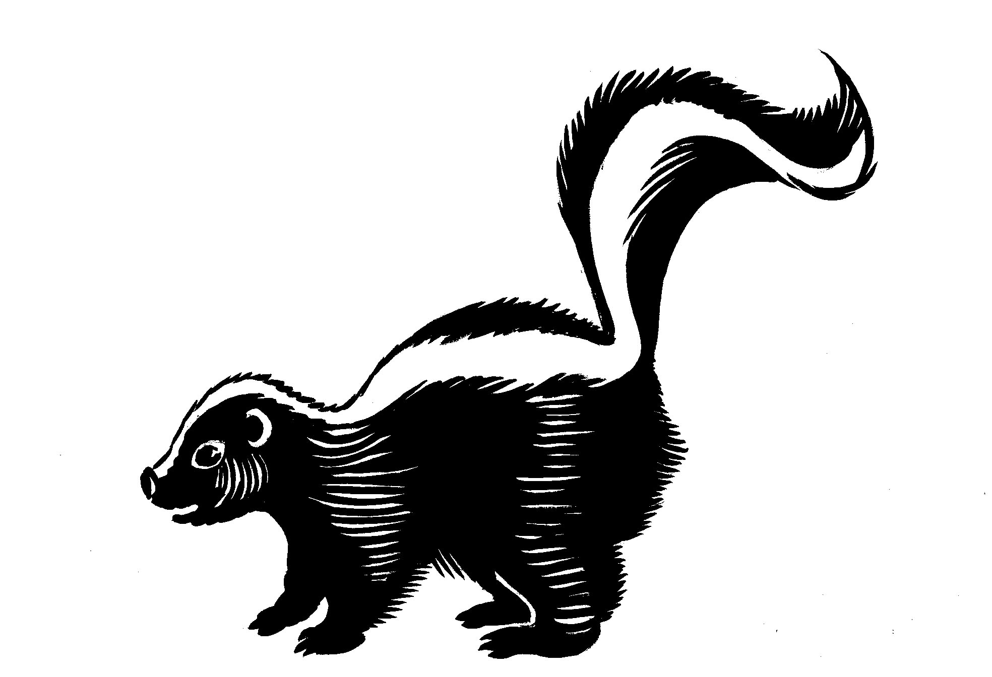 Stinky Skunk Cartoon Clipart Free Clip A-Stinky Skunk Cartoon Clipart Free Clip Art Images-17