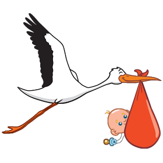 Stork Carrying Baby Boy