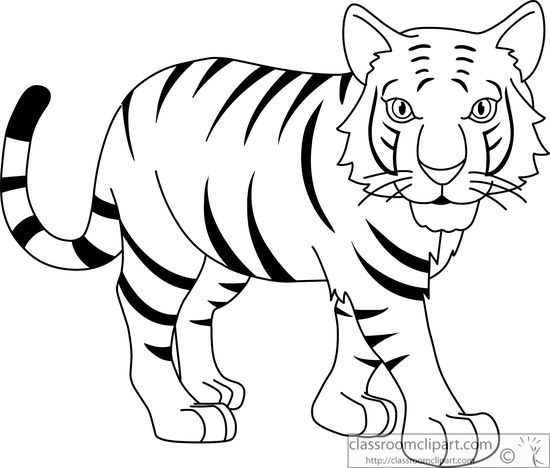 Stripped Bengal Tiger Black White Outlin-Stripped Bengal Tiger Black White Outline 914 Classroom Clipart-7