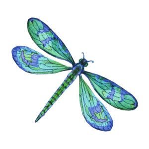 Stylized Dragonfly, Dragonfly Insect, Blue Dragonfly, Thing 300, Img Thing, Dragonflies