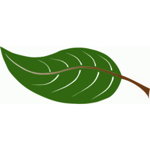 Summer Leaves Clip Art. large leaf - public domain .