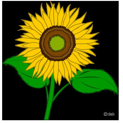 Sunflower Clip Art Clipart Free Clipart -Sunflower clip art clipart free clipart microsoft clipart clipartcow-9