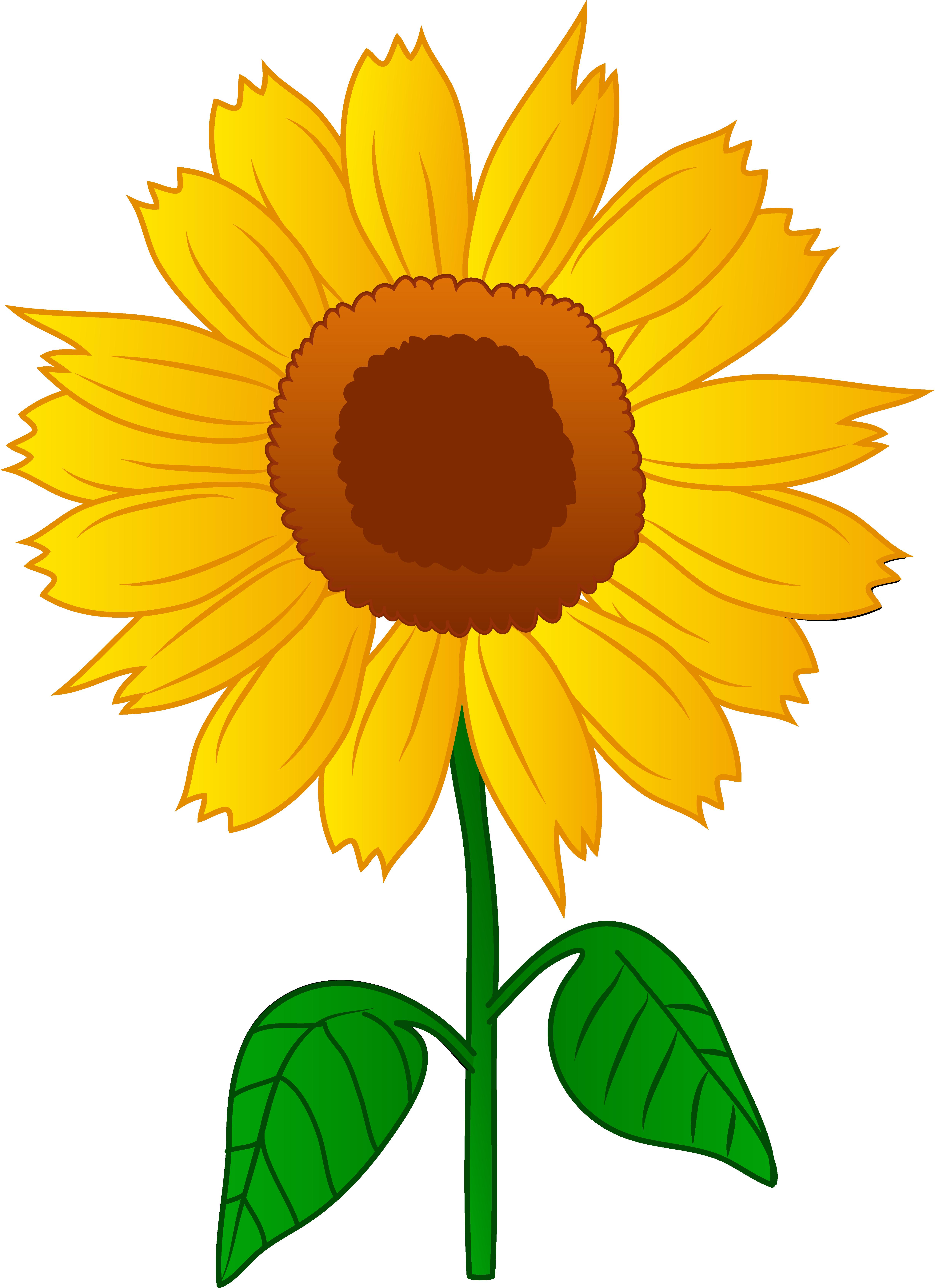 Sunflower Clip Art-Sunflower Clip Art-14