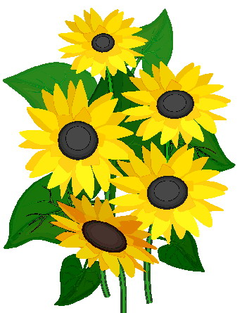 Sunflower clipart 1 image-Sunflower clipart 1 image-11