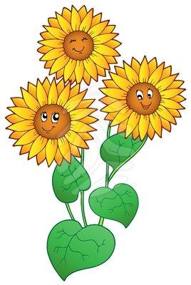 Sunflower clipart images - ClipartFest