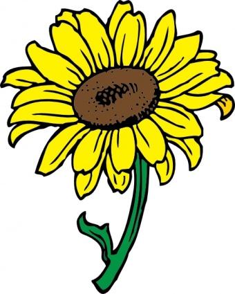 Sunflower Clipart-Sunflower Clipart-16