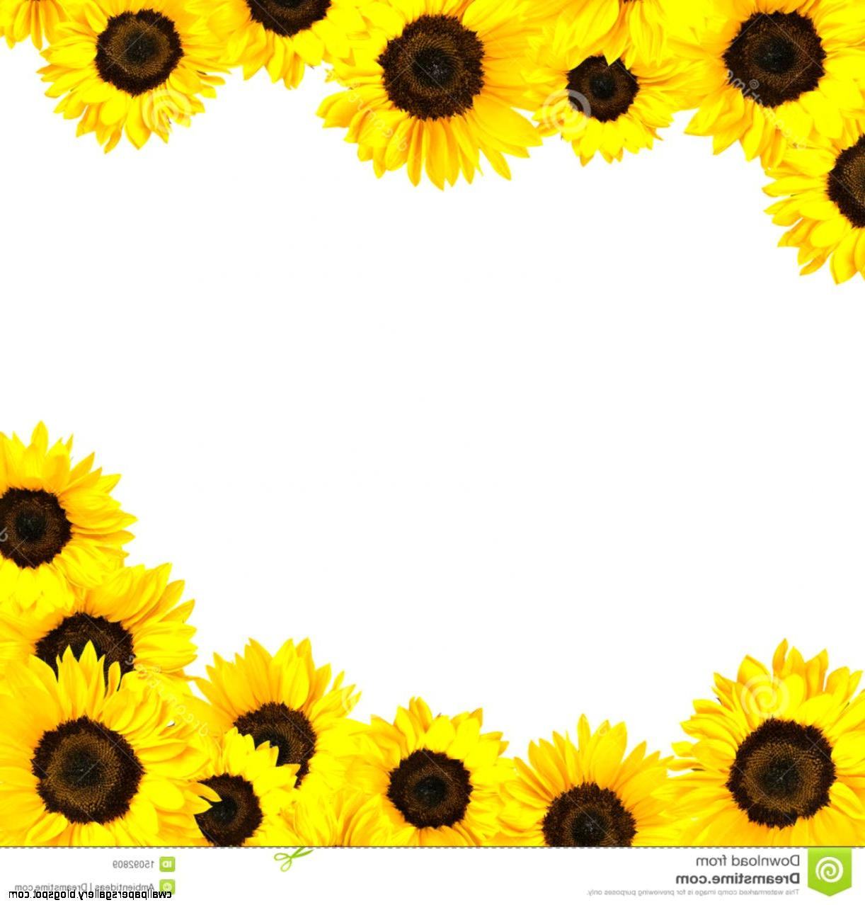 90+ Sunflowers Clipart | ClipartLook