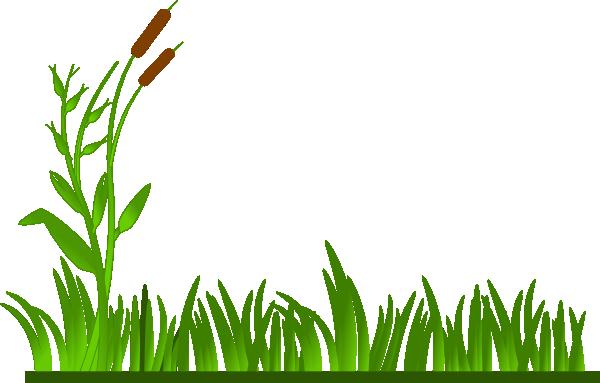 Swamp. Grass Field Clipart