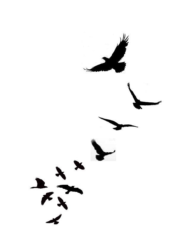 Tattoo Birds Flying Clipart .