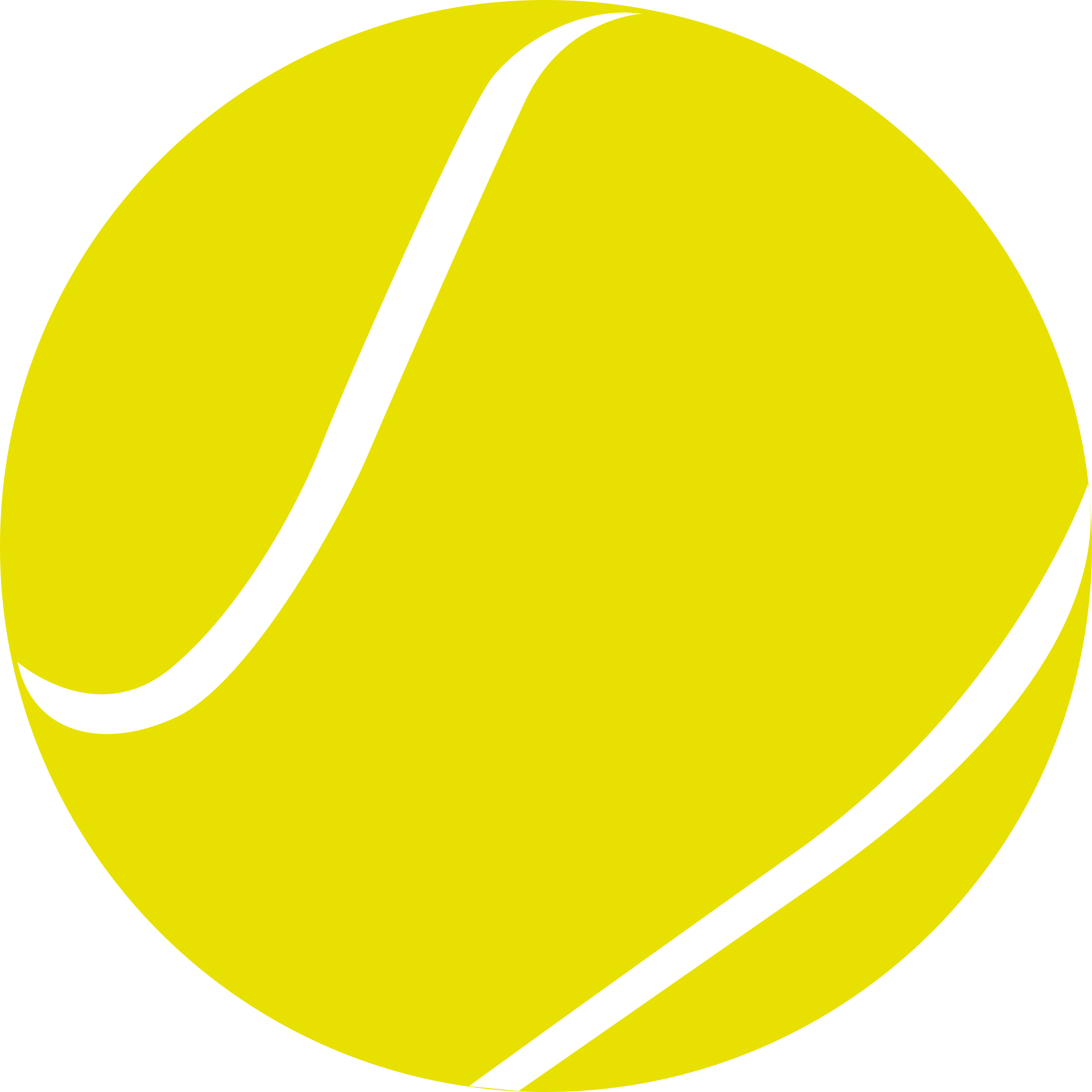 Tennis Ball PNG Image Tennis .