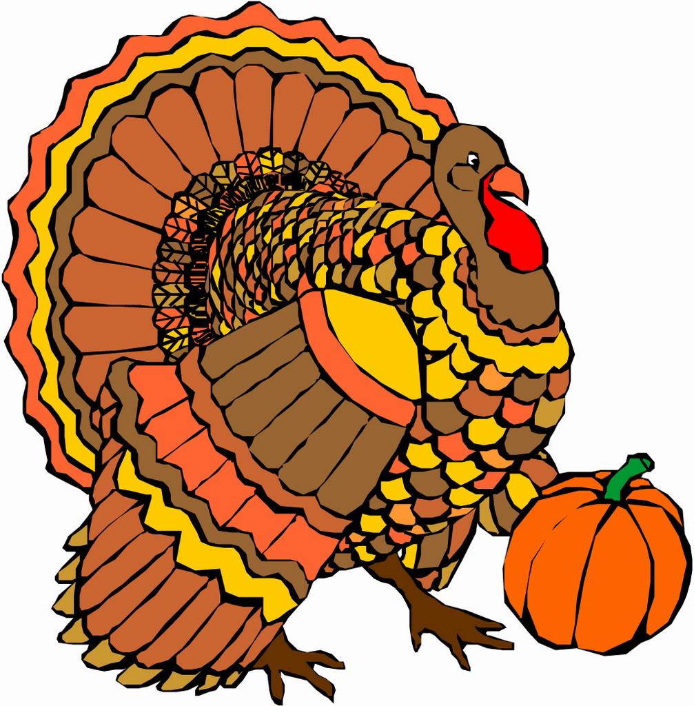 ... Thanksgiving Turkey Graphics   Free -... Thanksgiving Turkey Graphics   Free Download Clip Art   Free Clip .-15