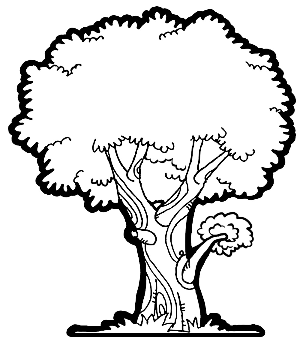 39 Tree Clipart Black And White Clipartlook