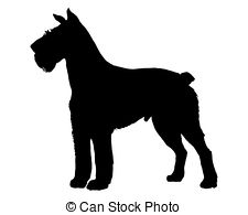... The Black Silhouette Of A German Sch-... The black silhouette of a German Schnauzer-17