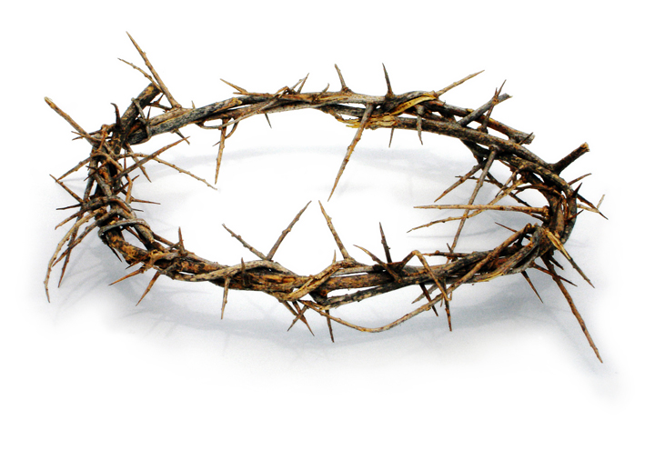 The Crown Of Thorns Pope Pius Sent To Je-The Crown Of Thorns Pope Pius Sent To Jefferson Davis-14