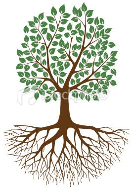 The Family Treeu2026 - Tree Roots Clipart
