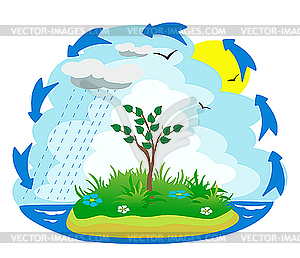 The water cycle - vector clip art. u203a