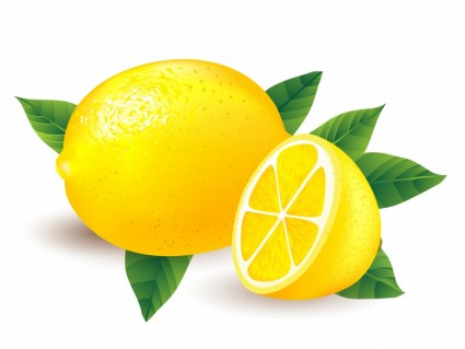 There Is 38 Lemon Outline Free Cliparts All Used For Free