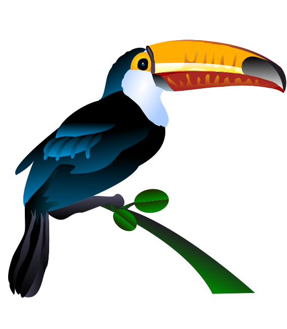 This toucan clip art is great for you to use on your aviary or zoo  projects, posters, reference books, websites, school projects, etc.