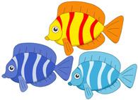 three colorful fish. Size: 57 Kb