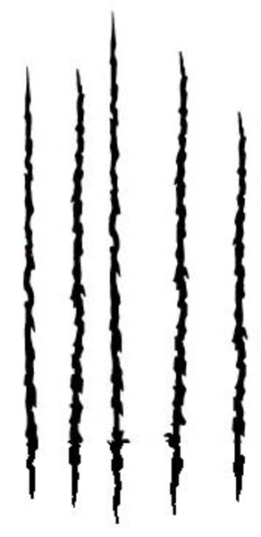 Tiger Claw Marks Clipart