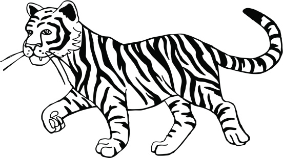 Tiger Clipart Black and White-Tiger Clipart Black and White-11