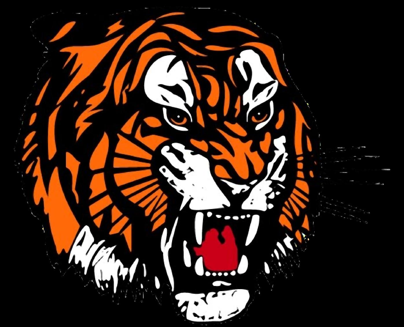 Tiger Face - Tiger Head Clipart