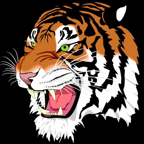 Tiger Face2