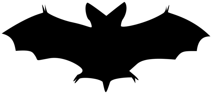 Todayu0026#39;s Image Is A Wonderful Sil-Todayu0026#39;s image is a wonderful silhouette of a bat! This one is not from my collection, but it is in the public domain and I think itu0026#39;s such a useful image ...-18