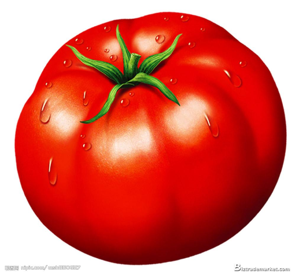 Tomato Clipart Download Photo